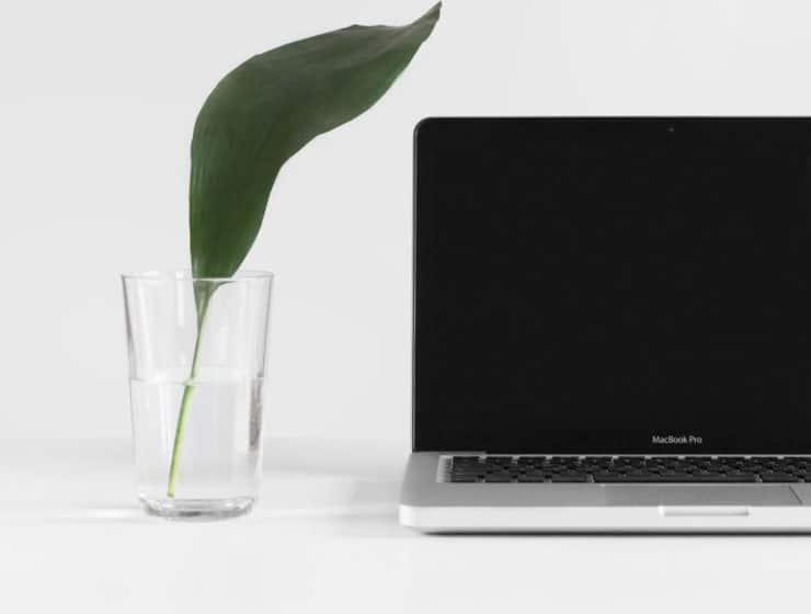 se mettre au minimalisme