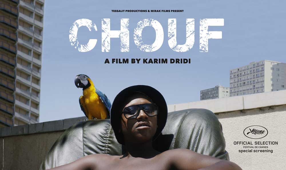 critique film chouf