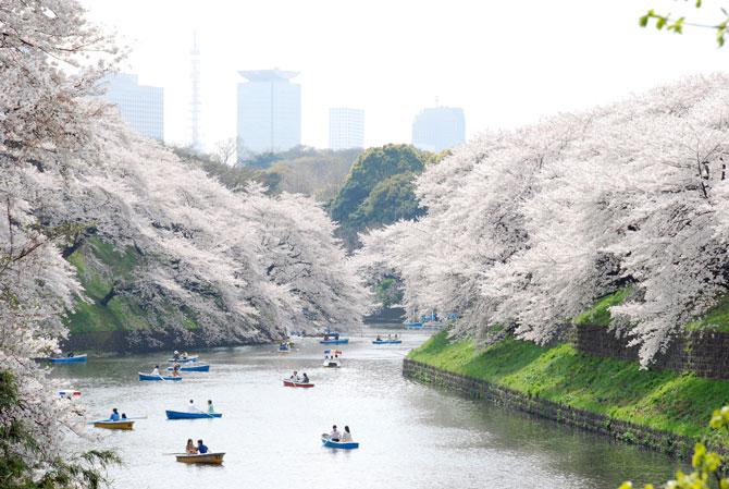 quartier ueno japon