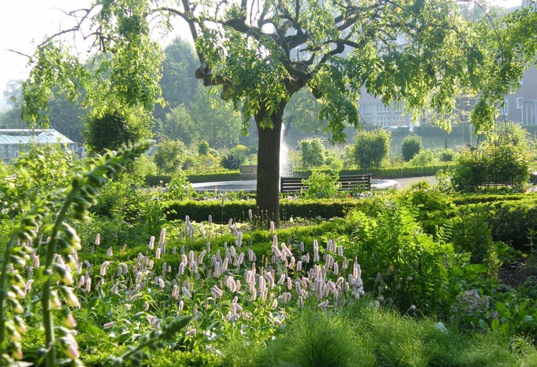 jardins des plantes amiens